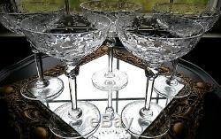 (5) Rogaska GALLIA Champagne/Tall Sherbet 7 1/8 Etched Floral Design GORGEOUS